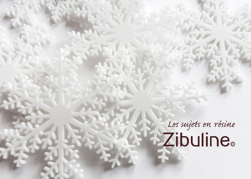 1611_zibuline_grosflocons