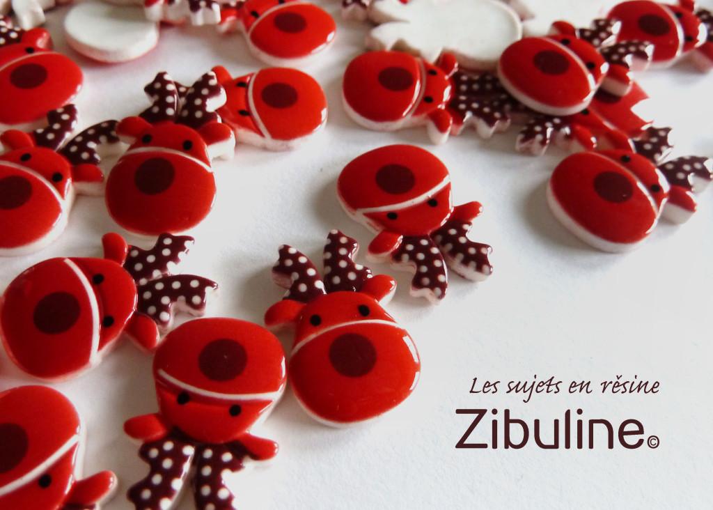 1611_zibuline_tetederenne