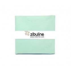 Coupon simili cuir - Mint